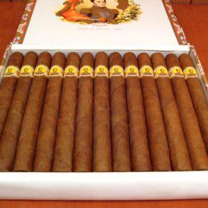 Cigar Bolivar Coronas Gigantes